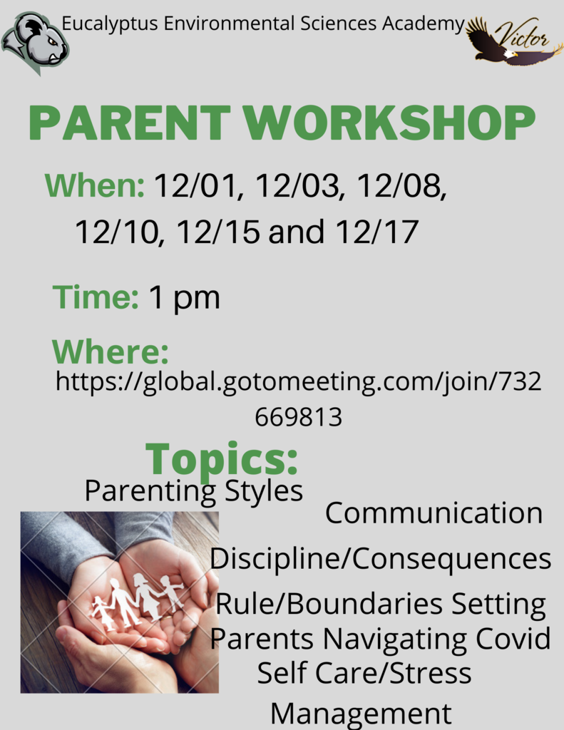 Parenting Workshop English