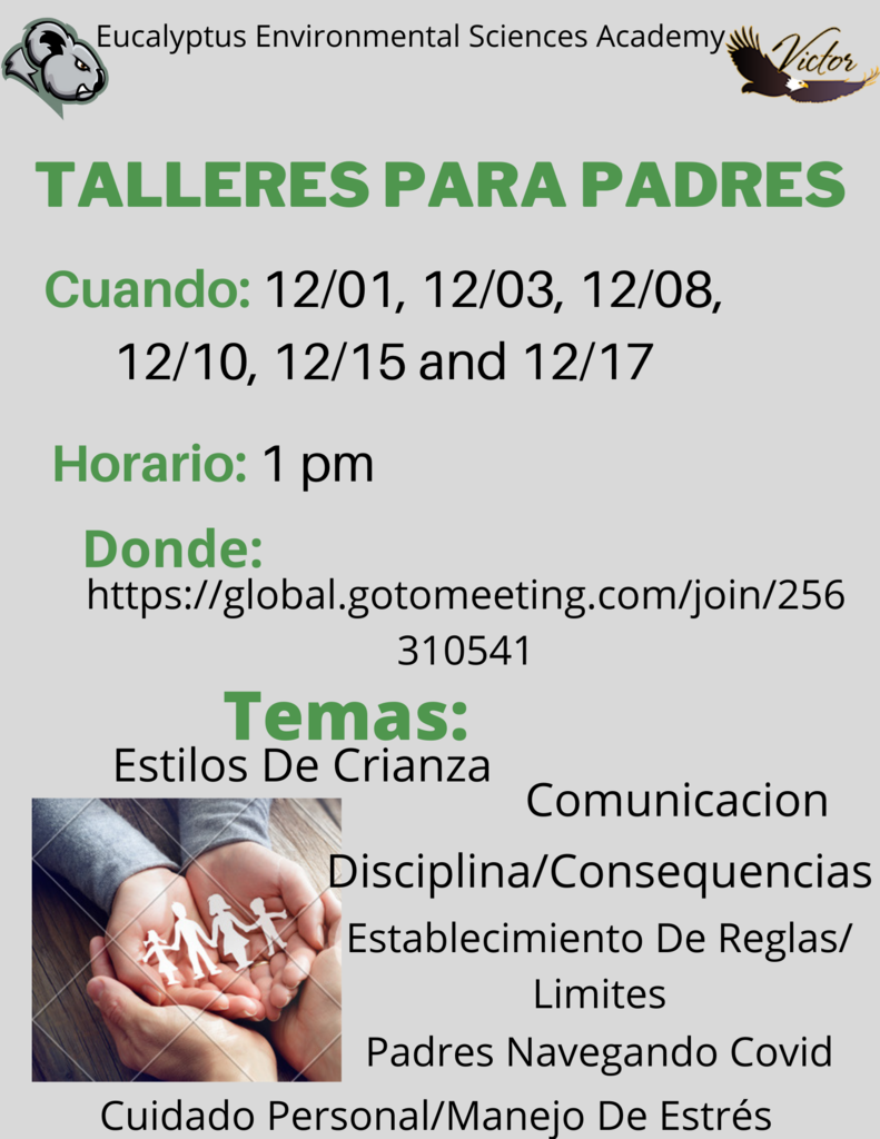 Parenting Workshop Spanish
